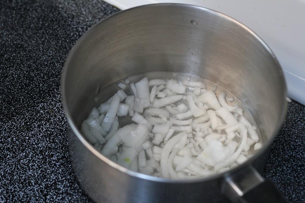 onion stroganoff recipe
