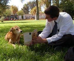 Alex silly missionary dog